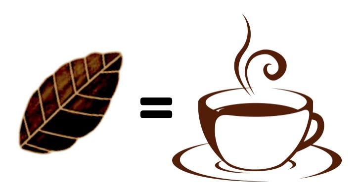 Guayusa Tea Extract