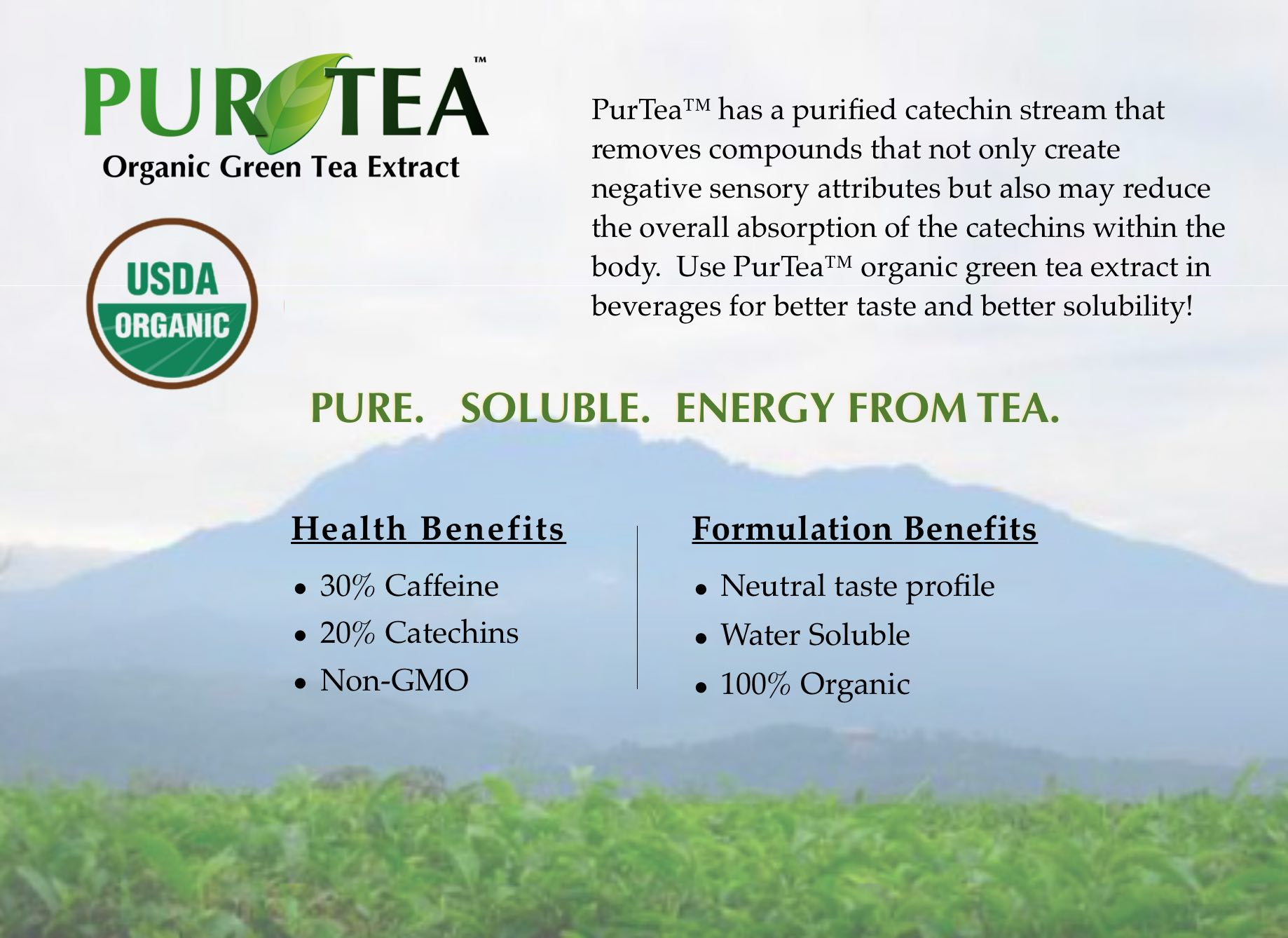 PurTea Organic Green Tea Extract for Beverages