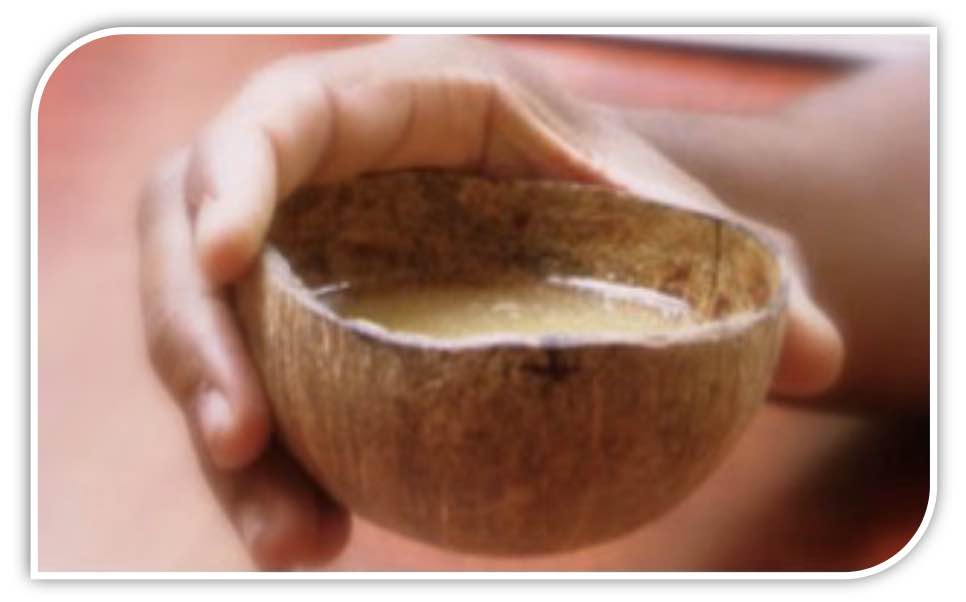 kava extract traditional cup kava root extract