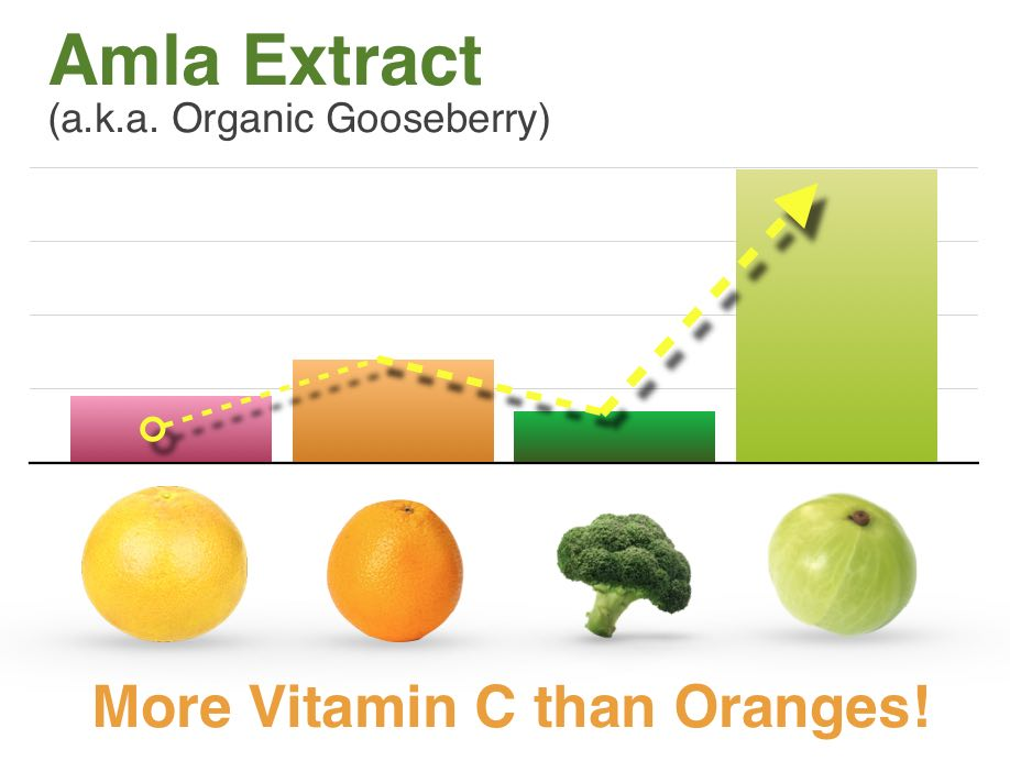 Amla Organic Vitamin C Extract